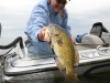 fish-and-game-finder-pics-007